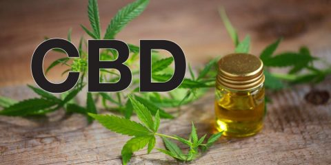 CBD! THC! What's with all the acronyms and what exactly is all the buzz about?